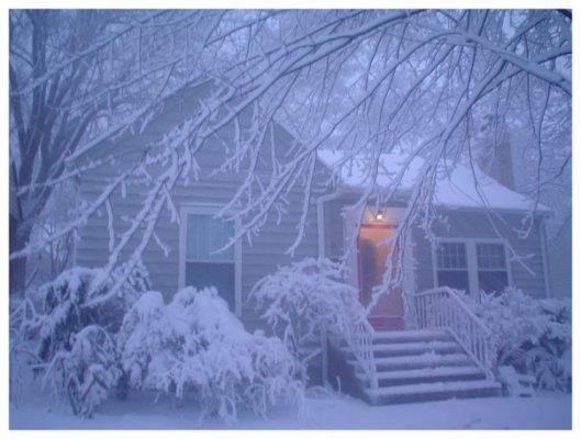 snowy home sweet home
