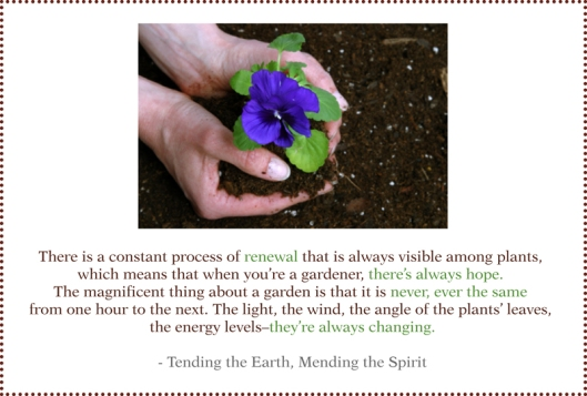 renewal garden