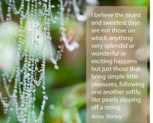 sweetest days