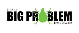 little tick big problem